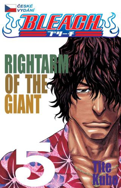 Bleach 5: Rightarm of the Giant